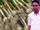 garlic-crop-farmer-vijay-singh-village-kanwan-mp