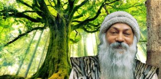 osho sambodhi maul shree making india