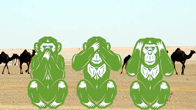 Three green monkeys in desert, Making India