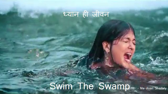 ma jivan shaifaly dhyan hi jivan meditation swim the swamp